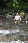 A man we spotted fly fishing in Gatlinburg, Tennessee.
