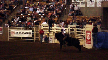 Franklin Rodeo:  Review & Tips From A First-Timer