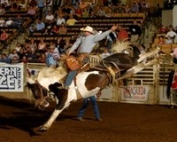 franklin-rodeo-picture.jpg
