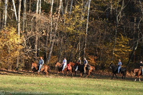 Horses and people horseback riding along the Natchez Trace Parkway. photo by Lynnette at TheFunTimesGuide.com