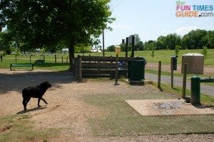 k9-korral-dog-park-water-fountain