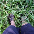 Lynnette's feet practically buried by tall weeds and grass in the Williamson County Fair parking lot.