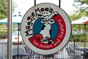 Maggie Moo's Ice Cream & Treatery In Franklin, TN