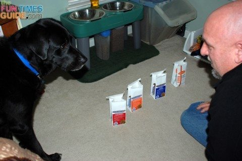 natures-select-dog-food-delivery