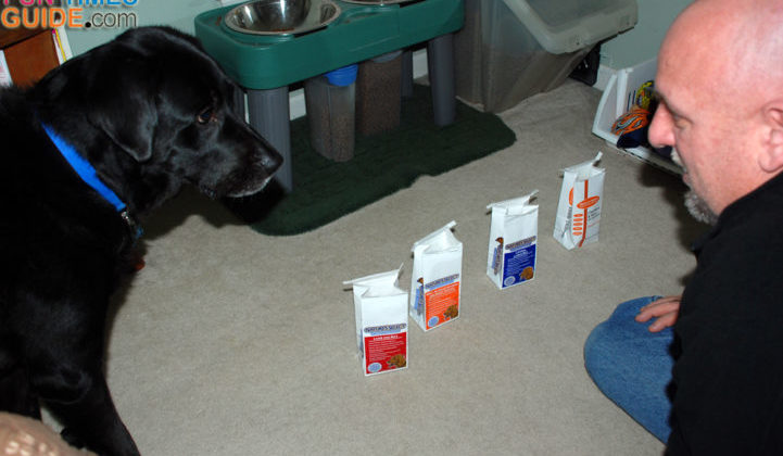 Our dog trying the Nature's Select dog food samples