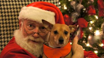 Pet Pictures With Santa In Franklin, TN At The Farm At Natchez Trace