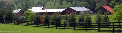 the-farm-at-natchez-trace-pet-boarding.jpg
