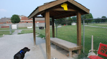 Our Favorite Dog Parks In Franklin & Nashville