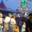 williamson county fair - franklin tennessee