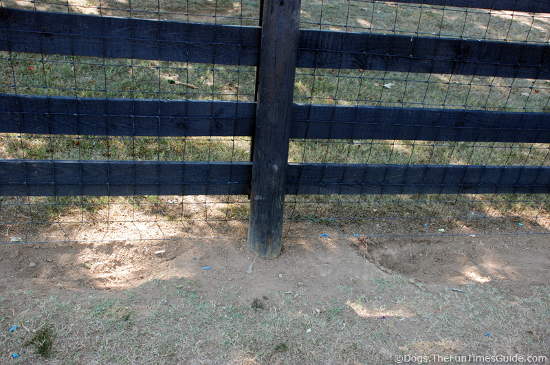 How to Keep a Dog From Climbing the Fence | eHow.com